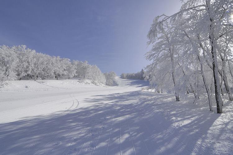 長野県・志賀高原のスキー場で冬のリゾートバイト