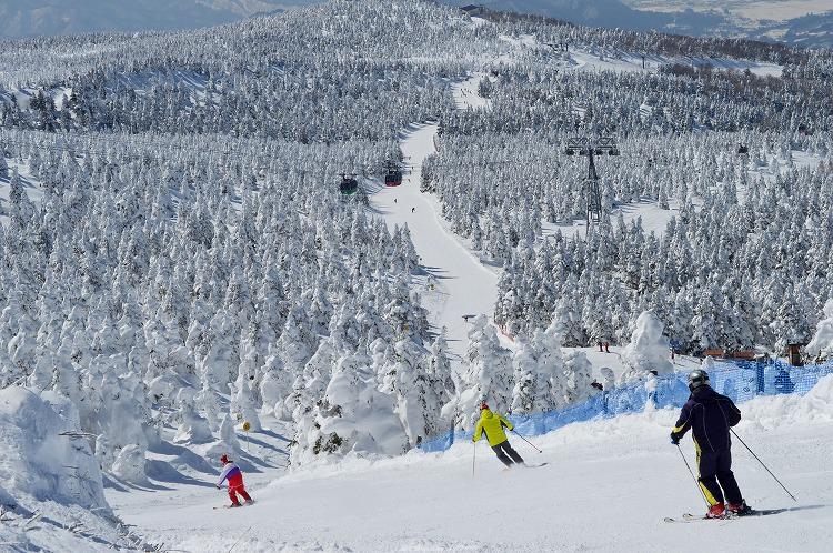 スキー場でのリゾートバイトがきっかけで北海道に永住
