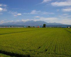 北海道中富良野にある高級リゾートホテルで2週間の短期リゾートバイト