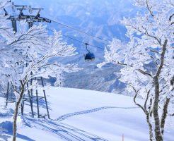大分県のスキー場で冬だけの短期住み込みリゾートバイトを経験した
