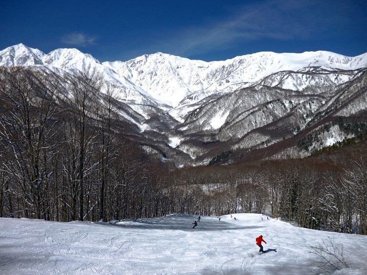 長野県白馬の栂池高原スキー場にあるホテルで秋からのリゾートバイト