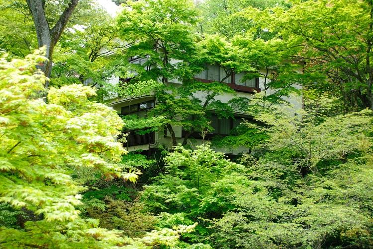 派遣として神奈川県箱根町のホテルで短期の住み込みリゾートバイト